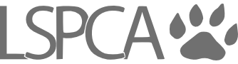 ref_logo6